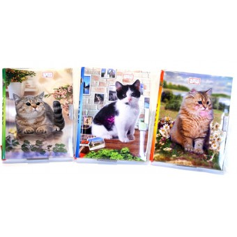 Dagbok med lås, kattmotiv